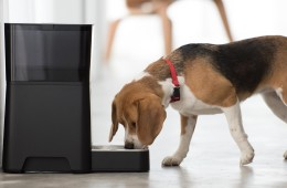 Petnet SmartFeeder - Automatic Pet Feeder for Dog and Cat