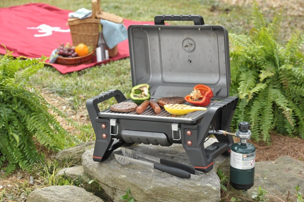 Char-Broil TRU Infrared Grill2Go X200 Grill - Anyone Up For Steaks 2