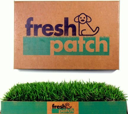 Fresh Patch Disposable Dog Potty with REAL Grass 1